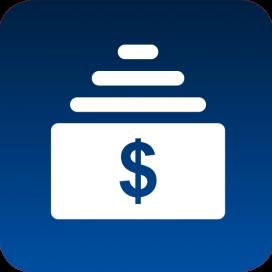 Guardian Insurance Group - Securities